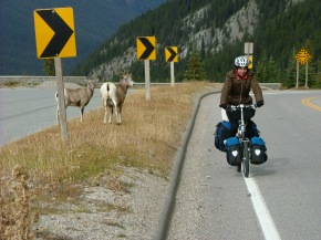 On assignment on the Icefields Parkway, Canadian Rocky Mountains