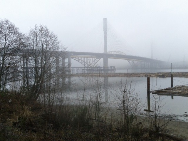 Port Mann Bridge from Port Coquitlam site